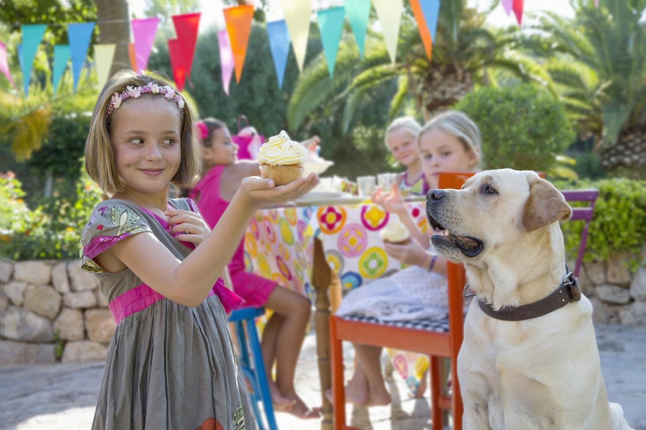 doggie_lama_birthday_party_cupcakes